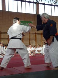 Roland Hernaez, màxim exponent del Tai jitsu a Vilanova del Camí