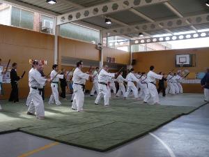 Primer curs bàsic de Tai Jitsu/ Tanbo Jitsu al Budokan Vilanova del Camí