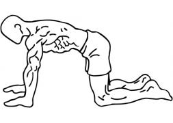 Una masterclass sobre abdominals per adquirir hàbits saludables