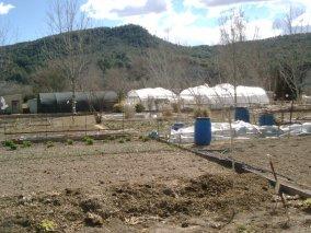 Es publica el plec de condicions d'accés als horts d'Ecovilanova