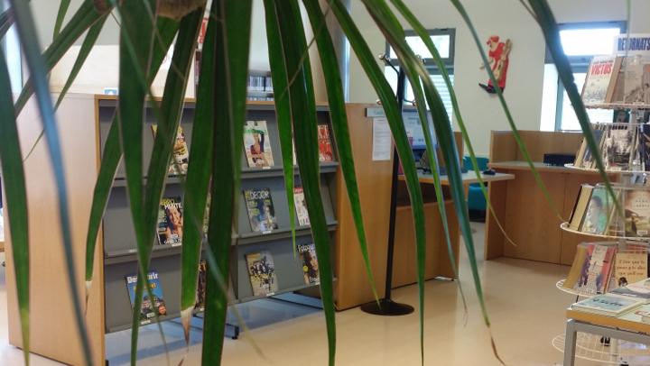 Com passar-ho de por a la biblioteca