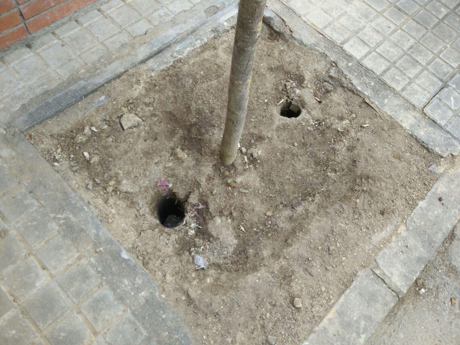 Desapareixen quatre tutors dels arbres del carrer Verge del Cap