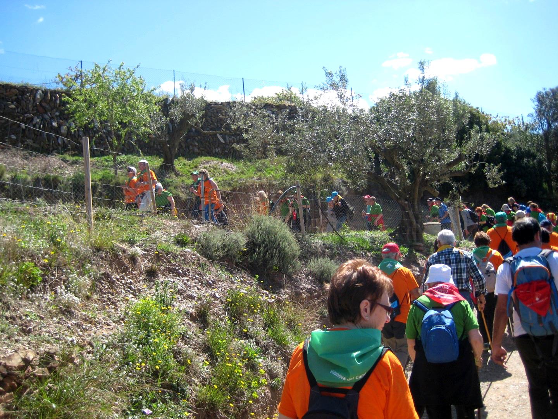 Un grup de 80 persones del grup vilanoví tanca les passejades a Torrelles