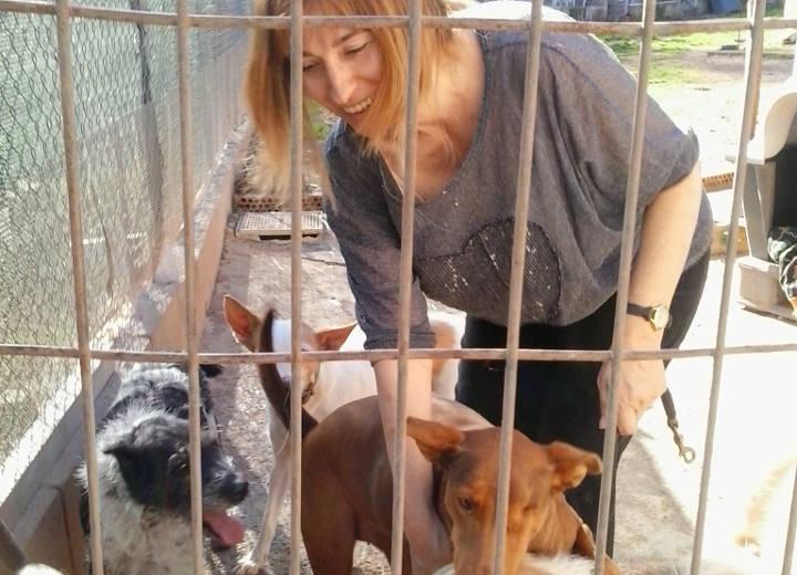 Tatanka enceta un nou calendari de sortides a les protectores d'animals
