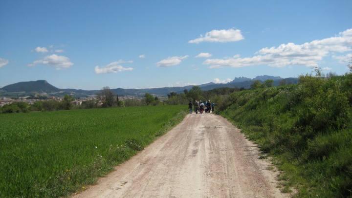 Ajuntament i ADF treballen plegats per a la millora dels camins forestals