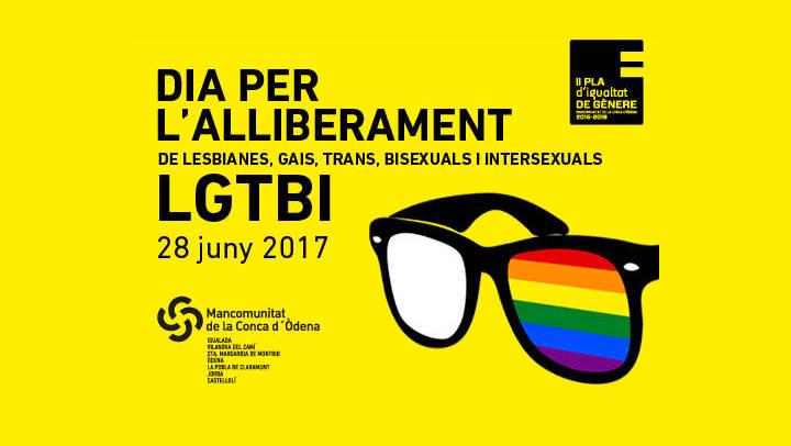 Els municipis de la MICOD celebren el Dia de l'Orgull i l'alliberament LGTBI
