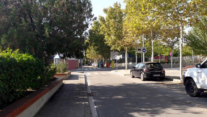 Actuació a l'arbrat del carrer Mossèn Amadeu Amenós que ha malmès les voreres