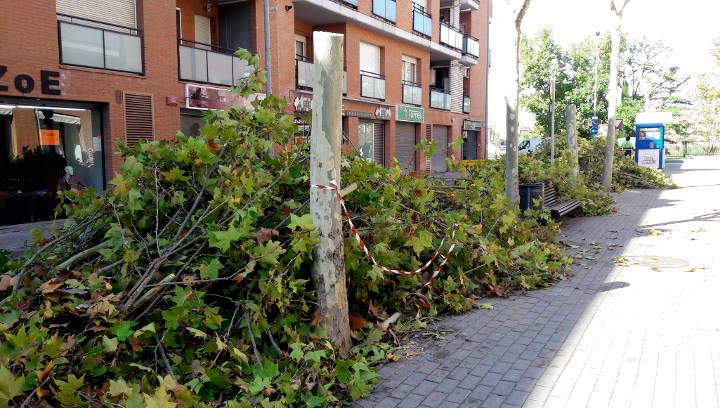 S'inicien els treballs de millora de les voreres del carrer Mossèn Amadeu Amenós