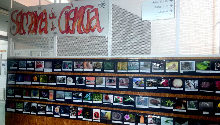 L'Institut Pla de les Moreres comença la setmana 'Fent ciència'