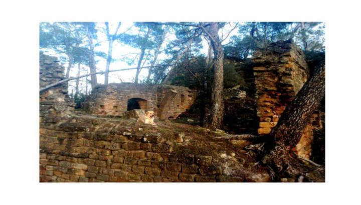 El Castell de Sant Jaume al Baix Llobregat serà el proper destí de la Colla Excursionista