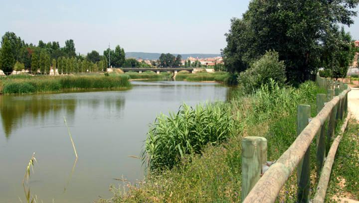 Esquerra Republicana promourà la neteja del riu a Vilanova del Camí