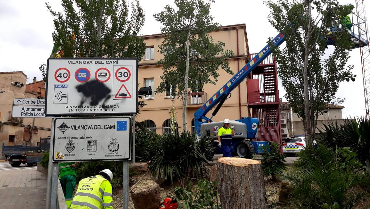 La tala d'un pollancre al carrer Verge de Montserrat afectarà el trànsit pel pont, dimecres al matí