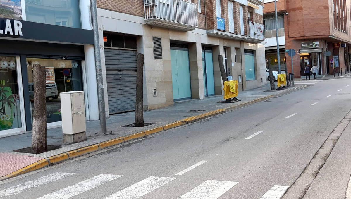La regidoria de Medi Ambient decideix substituir els arbres del carrer Montserrat perquè ocasionen problemes a la via pública i al veïnat