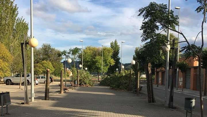 Continuen els treballs de tala a les espècies afectades del carrers Jueus i Ronda Oest