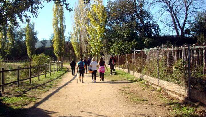 La primera caminada saludable de l'any amb l'equip de professionals del CAP vilanoví es fa dilluns al matí