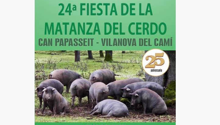 La matança del porc estrena novetats, aquest diumenge, en l'any del 25è aniversari de la UCE Anoia | ÀUDIO