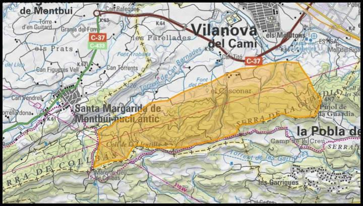 Aquest dissabte es farà una batuda del senglar per al seu control biològic a Vilanova del Camí
