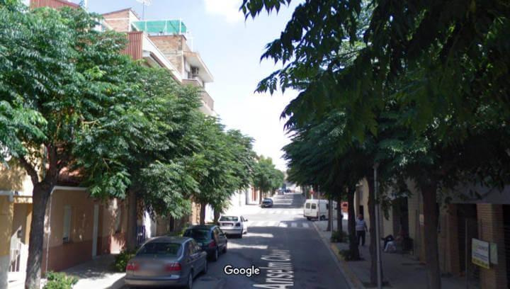 La queixa d'una veïna per les molèsties dels plataners del carrer Anselm Clavé arriba al Síndic de Greuges