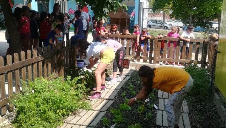 L'Escola Pompeu Fabra aconsegueix fer compost amb matèria orgànica que tornarà a donar fruit