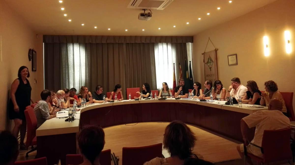 El vot de qualitat del govern aprova la compatibilitat de l'alcaldessa amb l'exercici professional | CRÒNICA DEL PLE